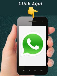 contacto whatsapp